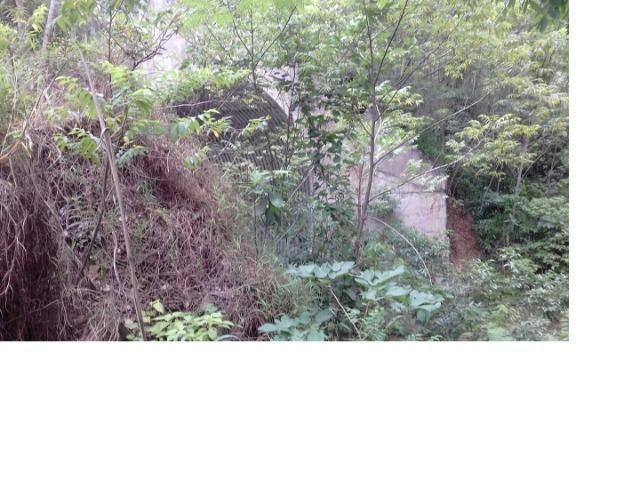 9.0 Hectares, Chapada dos Guimarães, 01 riacho e um rio, um paraíso, aceito troca - Foto 9
