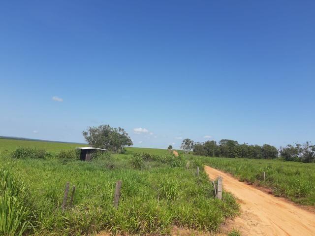 Fazenda de 154 alqueires - Foto 8