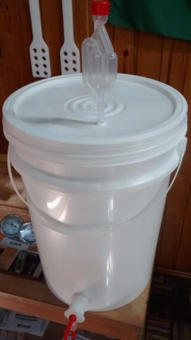 Balde Fermentador Maturador 22L para Cerveja Artesanal - More Hops! Brew Shop