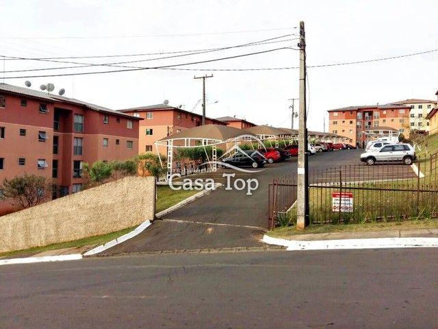 Apartamento à venda com 2 dormitórios em Estrela, Ponta grossa cod:4259