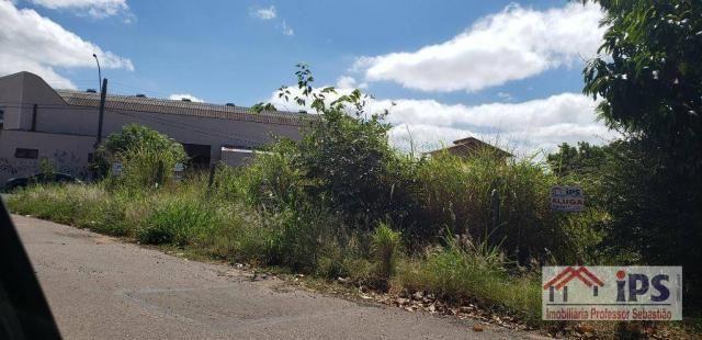 Terreno para alugar, 440 m² por R$ 1.500/mês - Vila Santa Isabel - Campinas/SP - Foto 2