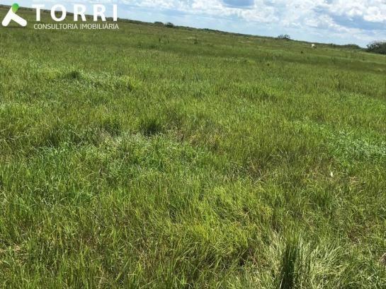 Fazenda a venda em Corumbá - Foto 6