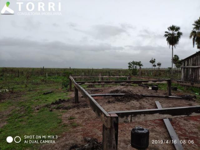 Fazenda a venda em Corumbá - Foto 4