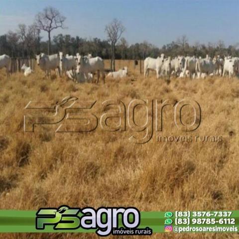 Fazenda à venda, 7000 hectares por R$ 105.000.000 - Centro - Porto Murtinho/MS - Foto 3