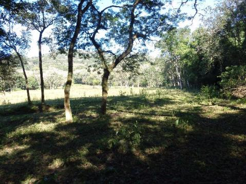 Área c/ 2 hec. Estrada Municipal de Canudos-Arroio Grande-10003 - Foto 12