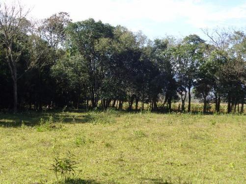 Área c/ 2 hec. Estrada Municipal de Canudos-Arroio Grande-10003 - Foto 6