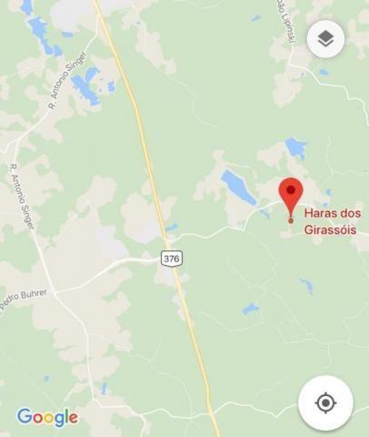 Chácara à venda em Zona rural, Curitiba cod:CH0002 - Foto 12