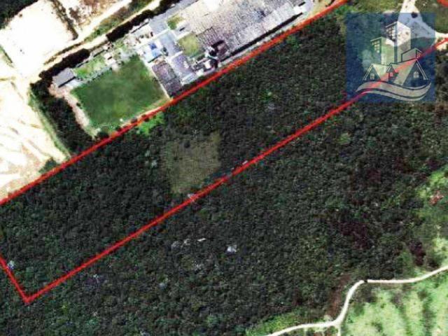 Leilão - Terreno à venda, 77.899 m² por R$ 8.495.365,30 - Raposo Tavares - São Paulo/SP