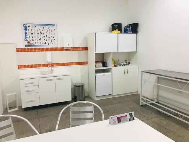 Pet Shop e Clinica Veterinária - Foto 9