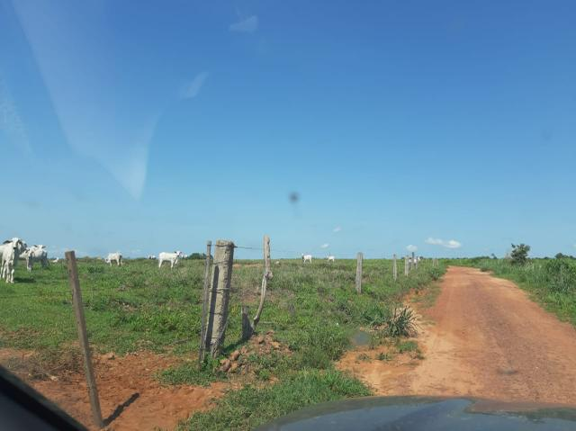Fazenda de 154 alqueires - Foto 2