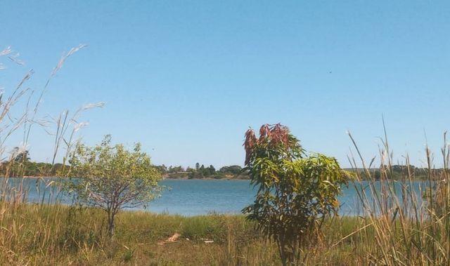 Chácara na Beira do Lago! 14 km de Palmas! Praia de Águas Cristalinas! - Foto 3