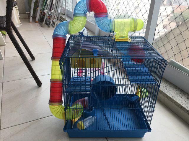 Vendo Gaiola de Hamster - Foto 2