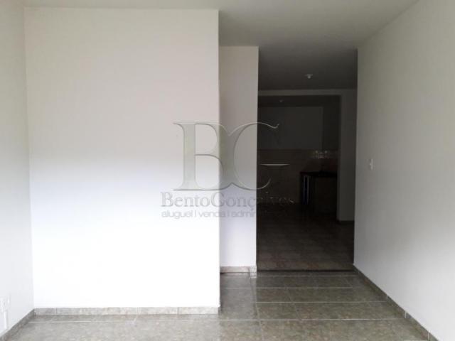 Apartamento para alugar com 3 dormitórios em Centro, Pocos de caldas cod:L2405 - Foto 3
