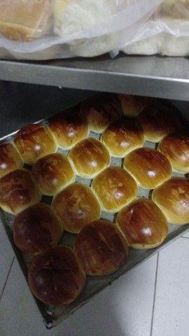 Pão hambúrguer todos tipo de pães