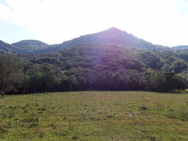 Área c/ 2 hec. Estrada Municipal de Canudos-Arroio Grande-10003 - Foto 2