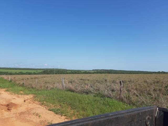 Fazenda de 154 alqueires - Foto 9