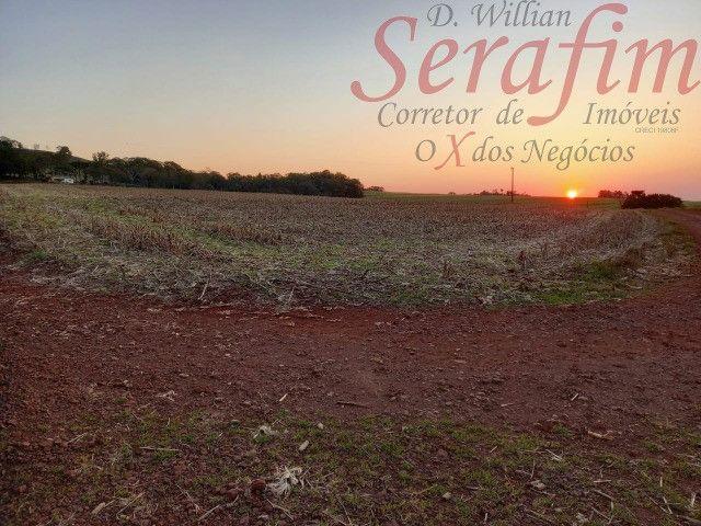 Chácara de 1 alq. na região de Santa Tereza por 300 mil Willian Serafim
