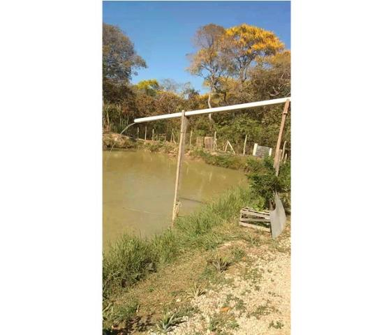 Ocasião,14,95 hectares,porteira fechada,peixes,Novilhas,Santo Antônio-MT - Foto 5