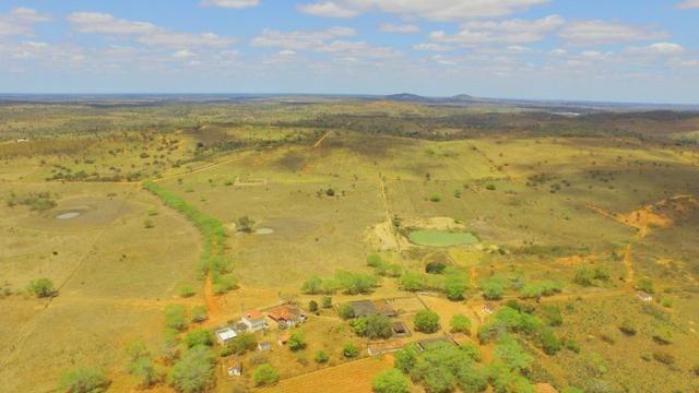 Fazenda à Venda na Bahia - Fazenda de Pecuária c/ 326 Hectares em Várzea do Poço - Bahia - Foto 2