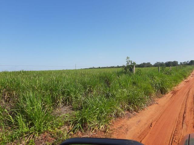 Fazenda de 154 alqueires - Foto 19