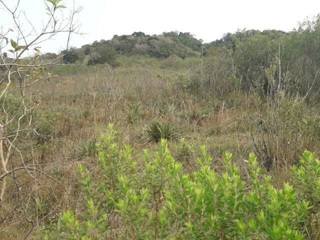 14,9 hectares de terra na beira do rio Uruguai