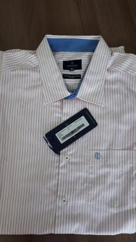 1206d6b40e Camisas de manga curta INDIVIDUAL Tam 7 Lindas