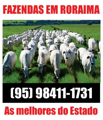 Fazenda com 3680 hectares em Mucajaí / RR. ler descrição do anuncio