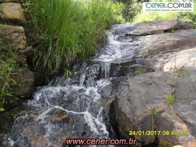07F/Bela fazenda de 18,78 ha com linda sede estilo antigo, cachoeiras e produtiva - Foto 8