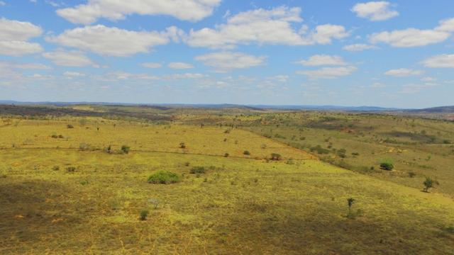 Fazenda à Venda na Bahia - Fazenda de Pecuária c/ 326 Hectares em Várzea do Poço - Bahia - Foto 5