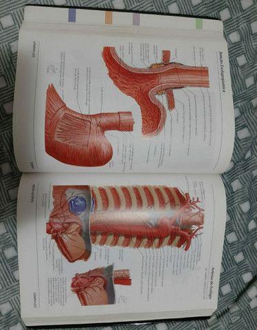 Livro Atlas de Anatomia Humana - Foto 3