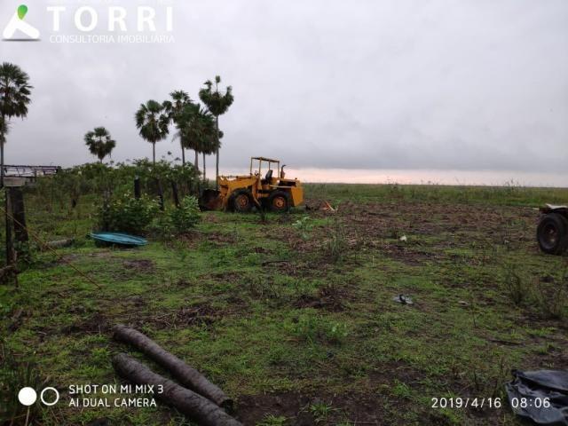 Fazenda a venda em Corumbá - Foto 14