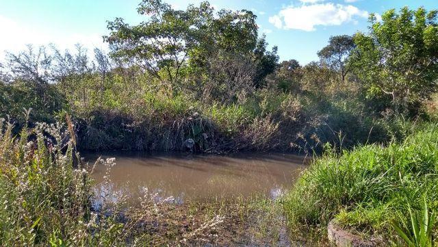 Sítio 14,6 ha e água nascente - Terenos, MS, Brasil - Foto 12