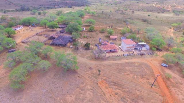 Fazenda à Venda na Bahia - Fazenda de Pecuária c/ 326 Hectares em Várzea do Poço - Bahia - Foto 6