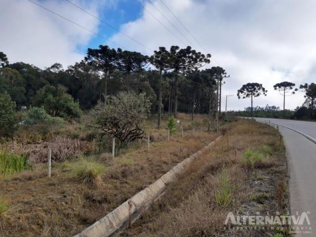 Ótimo Terreno Rural 32.000m2, Vila Volta Grande - Rio Negrinho SC. Oportunidade - Foto 13