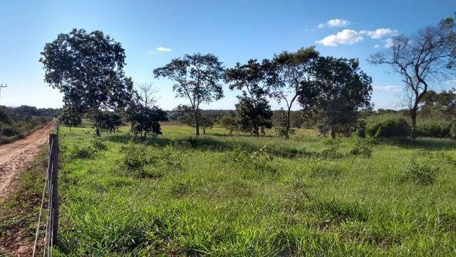 Sítio 14,6 ha e água nascente - Terenos, MS, Brasil - Foto 11