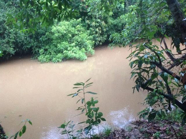 Chácara em caldas toda cercada,casa 3 dormitórios,quiosque,rio pirapitinga,poço de peixe - Foto 10