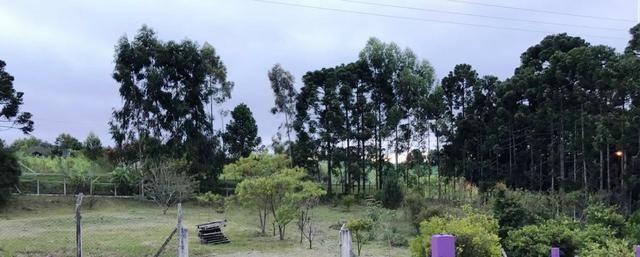 Chacara a 4 km do centro de Araucara 3.734,18 pronto para construir - Foto 5