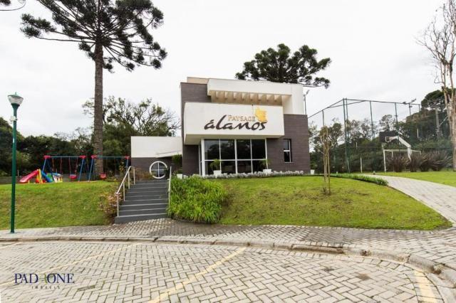 Loteamento/condomínio à venda em Pilarzinho, Curitiba cod:TE0002 - Foto 4