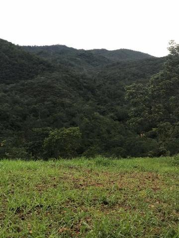 135 Alq. Pronta + Beira Rio! 40 km Pires do Rio. - Foto 12