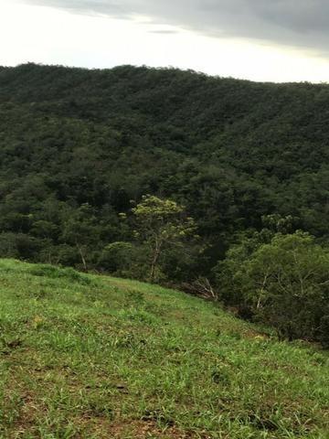 135 Alq. Pronta + Beira Rio! 40 km Pires do Rio. - Foto 15