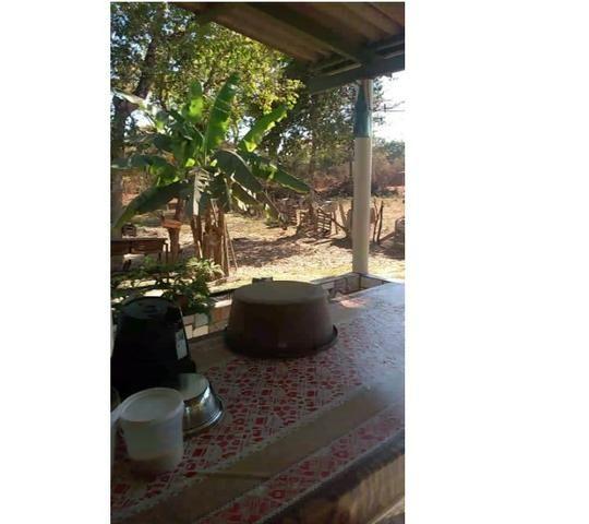 Ocasião,14,95 hectares,porteira fechada,peixes,Novilhas,Santo Antônio-MT - Foto 7