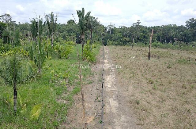 Fazenda na Linha 33 sentido Humaitá - Foto 4
