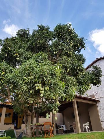 Chácara em Parnamirim, bairro boa esperança - Foto 4
