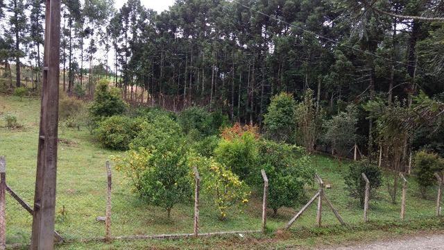 Chacara a 4 km do centro de Araucara 3.734,18 pronto para construir - Foto 3
