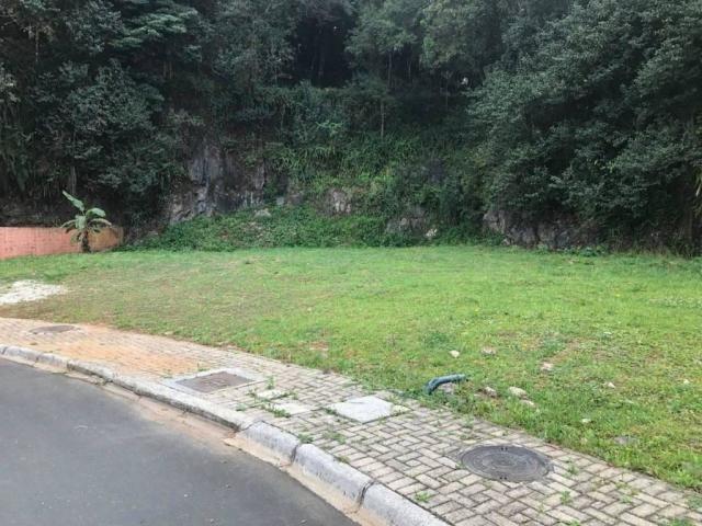 Loteamento/condomínio à venda em Pilarzinho, Curitiba cod:TE0022 - Foto 18