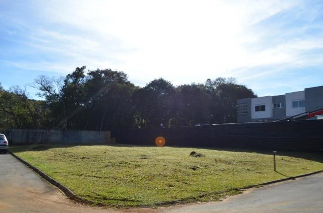 Loteamento/condomínio à venda em Campo comprido, Curitiba cod:TE0011 - Foto 4