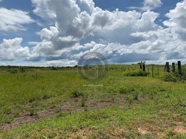 Fazenda 1300 ha para Arrendamento barra do bugres - Foto 4