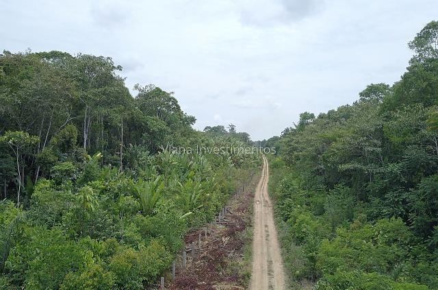 Fazenda na Linha 33 sentido Humaitá - Foto 3