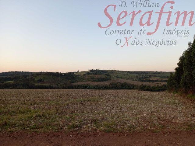Chácara de 1 alq. na região de Santa Tereza por 300 mil Willian Serafim - Foto 2