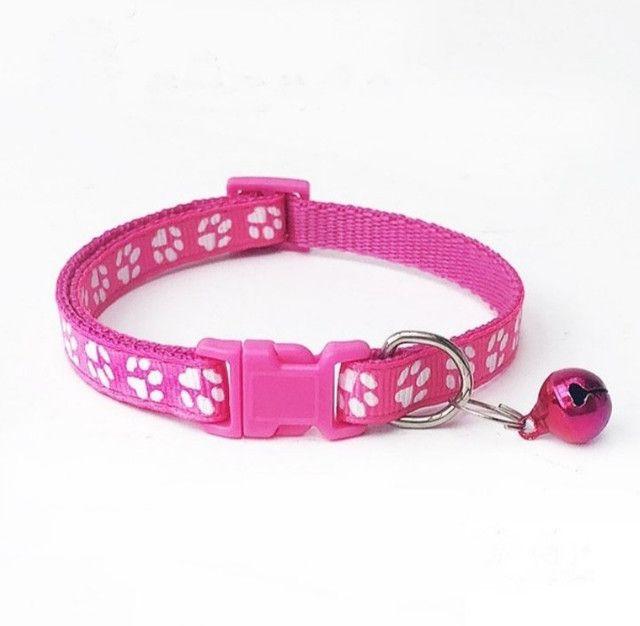 Coleiras para Cães e Gatos - Promoção !!! - Foto 2